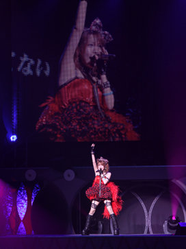 Morning Musume,Tanaka Reina,Hello! Project,Budokan,graduation