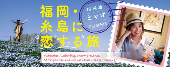 Fukuoka Authority, Meow Presents