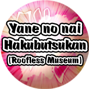 The Roofless Museum