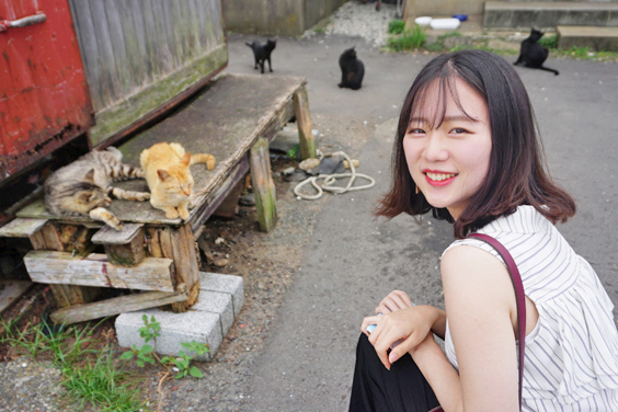 Ainoshima and Cats